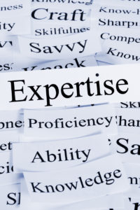 Expertise, Experts, Skill